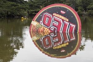 w#190 UFO - unidentified falling object  (未確認墜落物体)