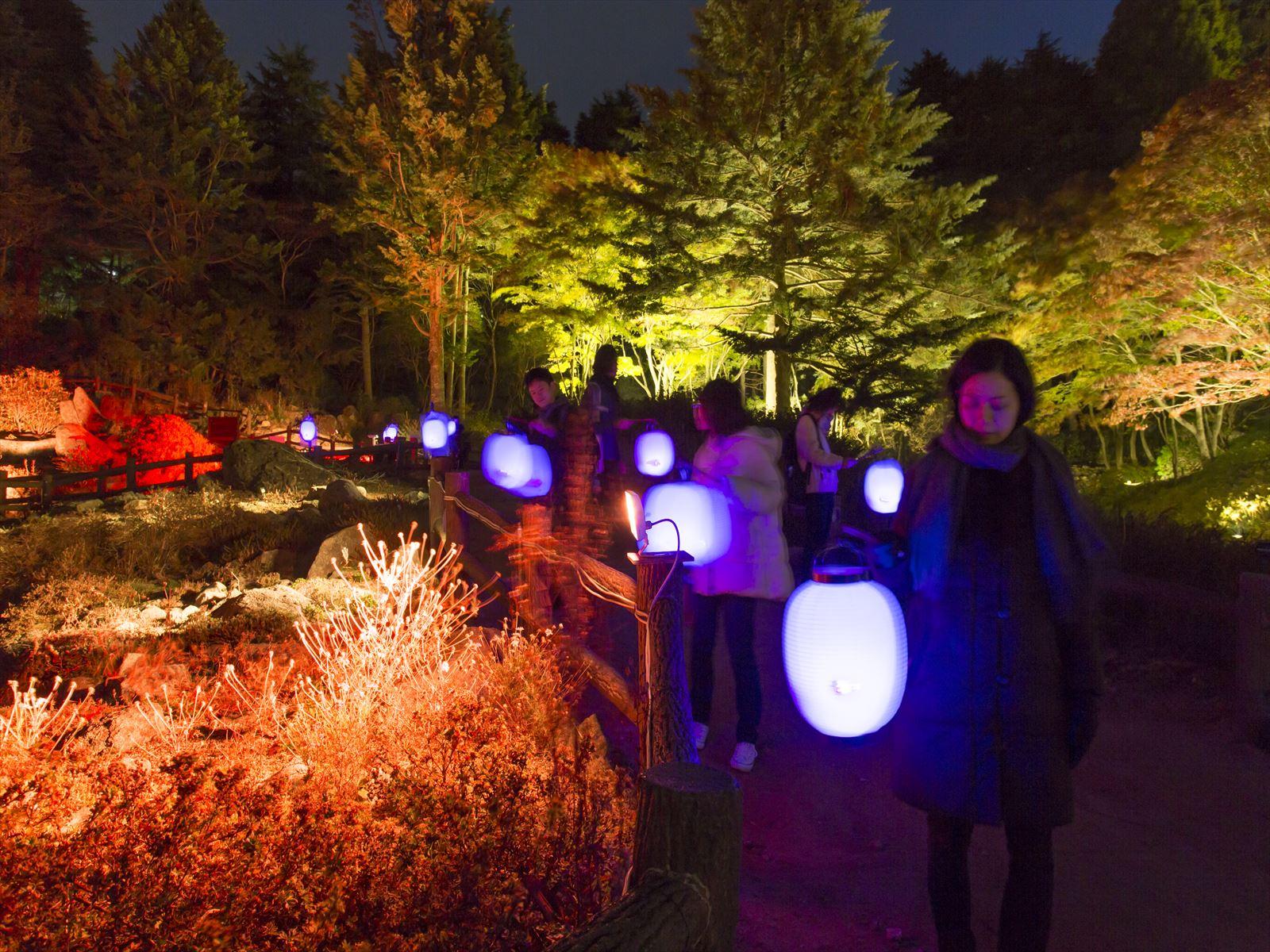 髙橋匡太 ≪Glow with Night Garden Project in Rokko提灯行列ランドスケープ≫ 2016年 六甲高山植物園