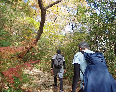 12/15(土)今年最後のハイキングは深田池公園から六甲山上へ!