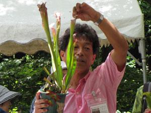 食虫植物の寄せ植え体験