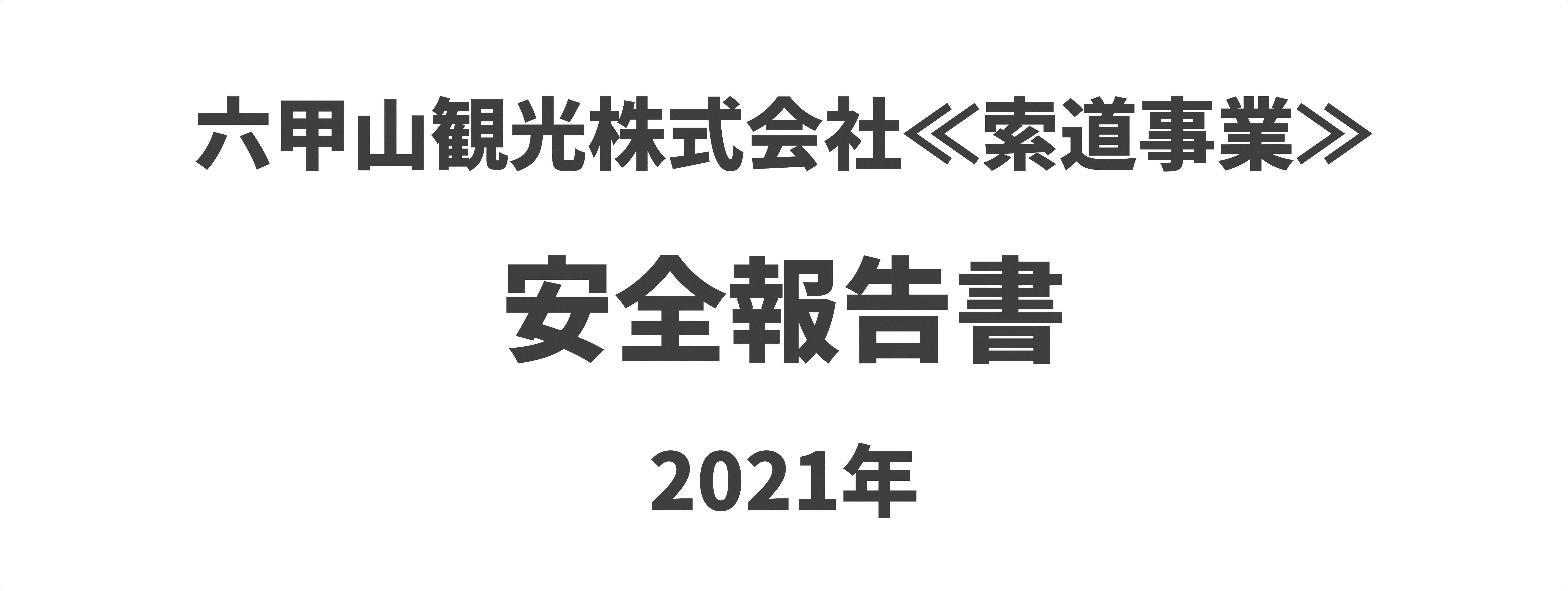 安全報告書2020年