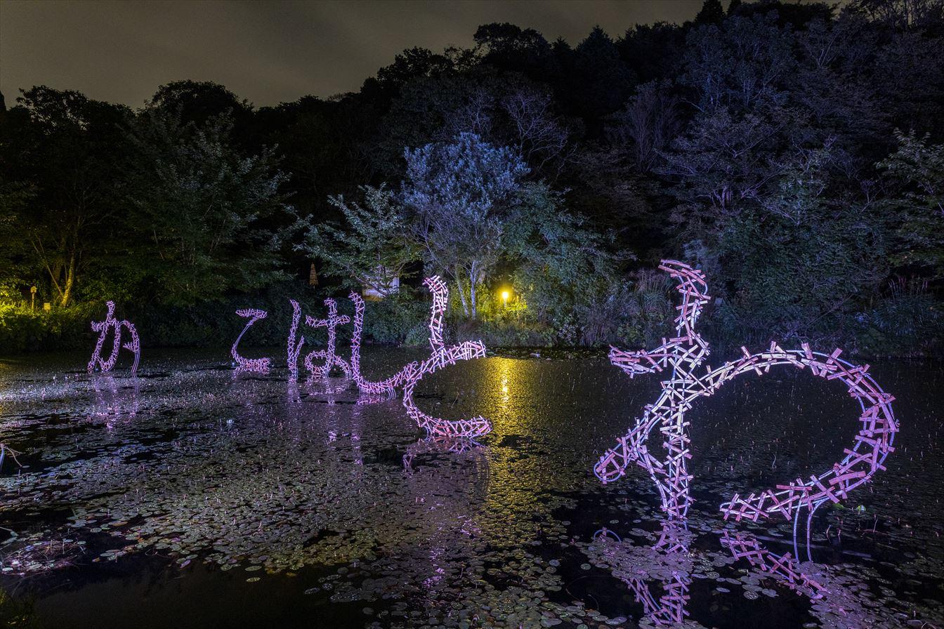 六甲・有馬が夜も華やぐ!ザ・ナイトミュージアム~夜の芸術散歩~いよいよ開幕!