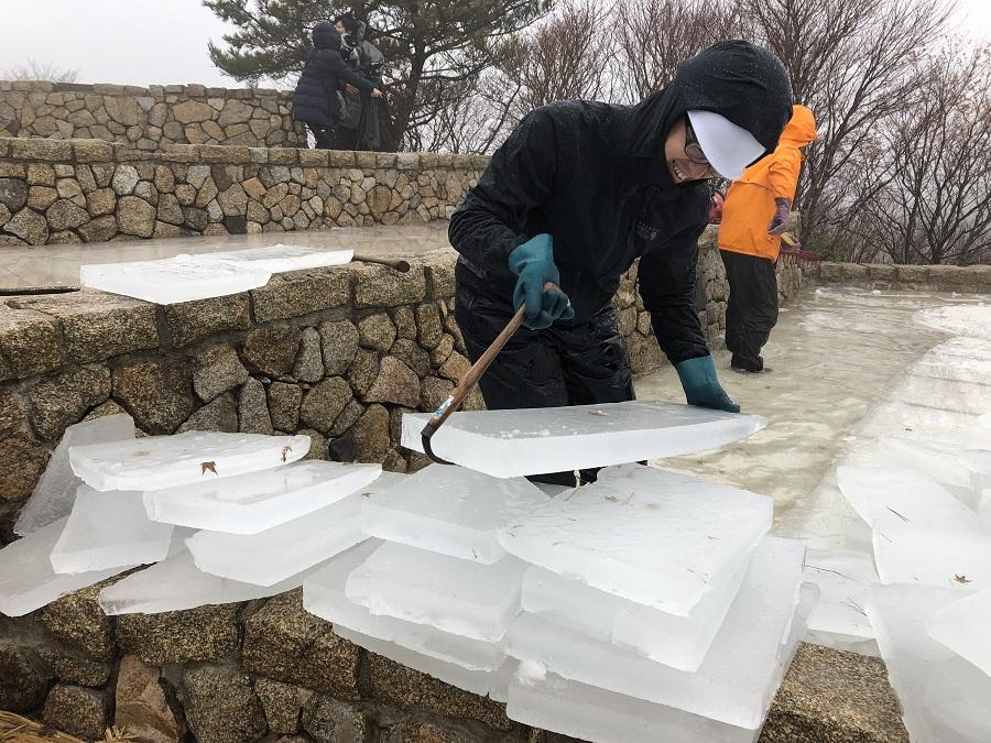 【2年ぶりに六甲枝垂れにて開催!】1/20(水) 六甲山の冬の風物詩「氷の切り出し」
