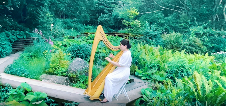【毎週日曜日開催】SIKIガーデンコンサート