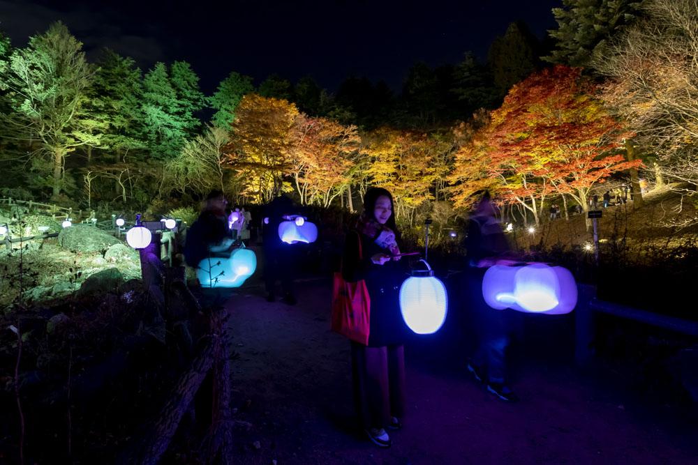 【10/16~】夜の紅葉散策 & ザ・ナイトミュージアム