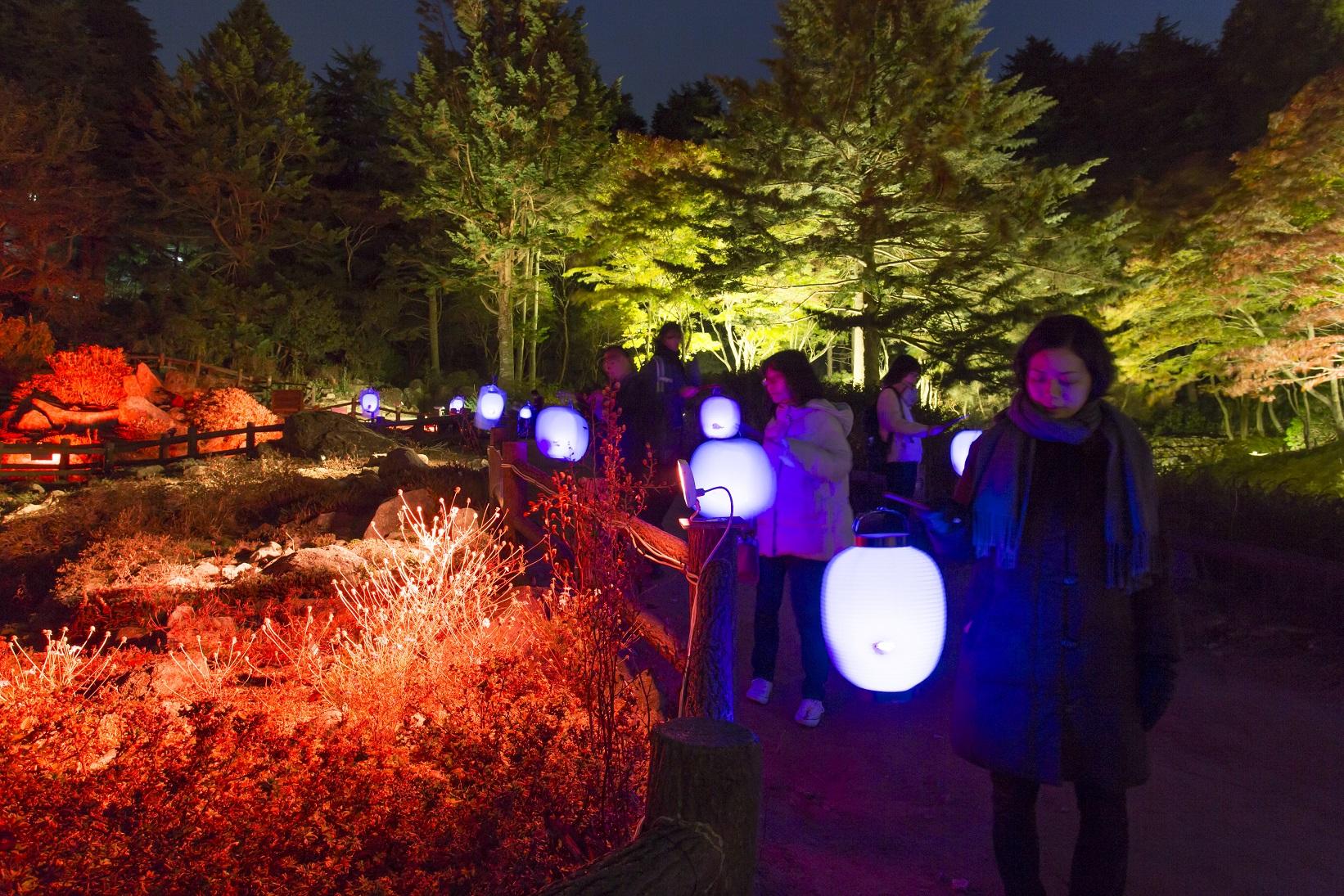 過去の開催風景 髙橋匡太「Glow with Night Garden project in ROKKO 提灯行列ランドスケープ」2016